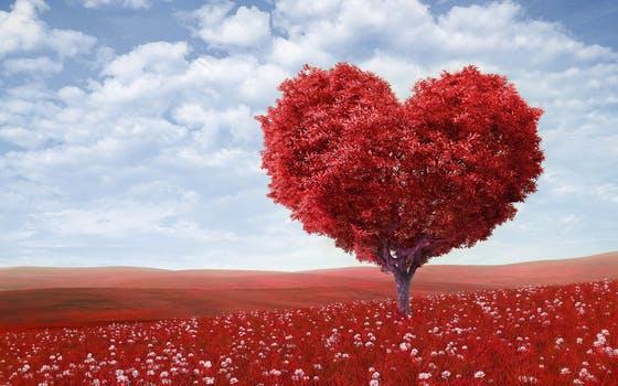 o ljubavi